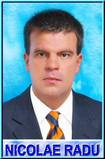 Prof. univ. dr. Nicolae Radu
