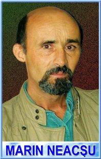 Col. (r) Marin Neacsu