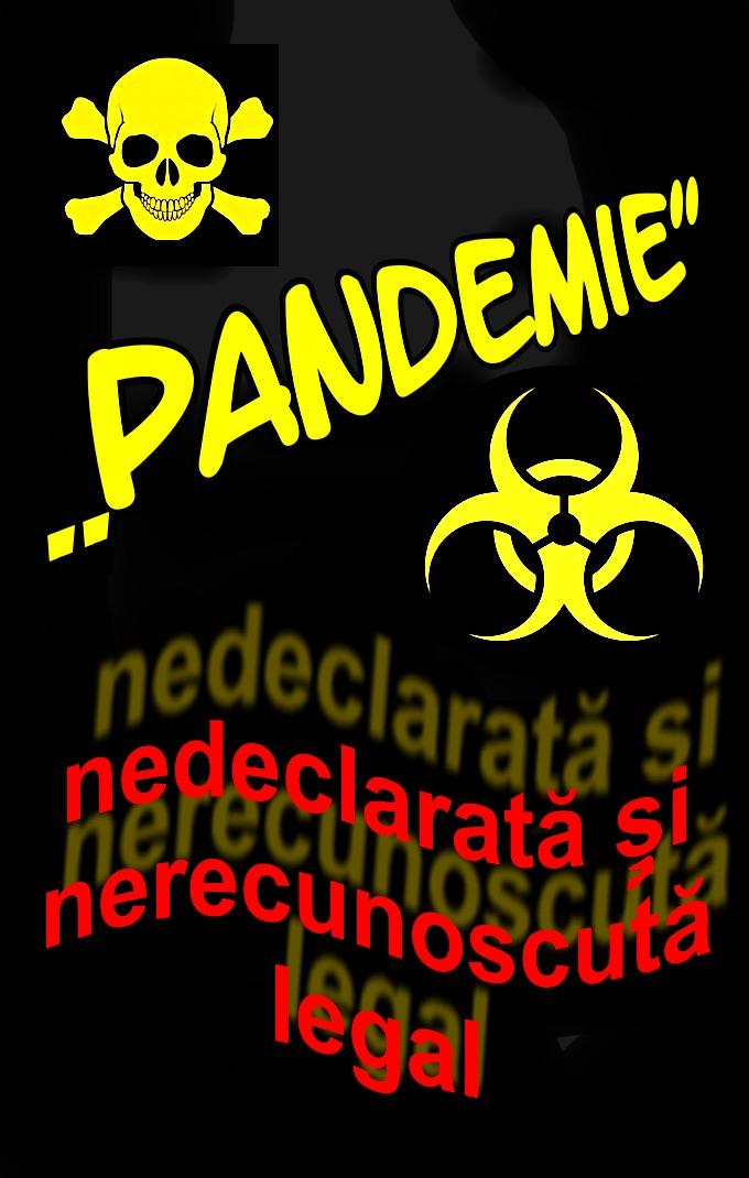 Pandemie ilegala