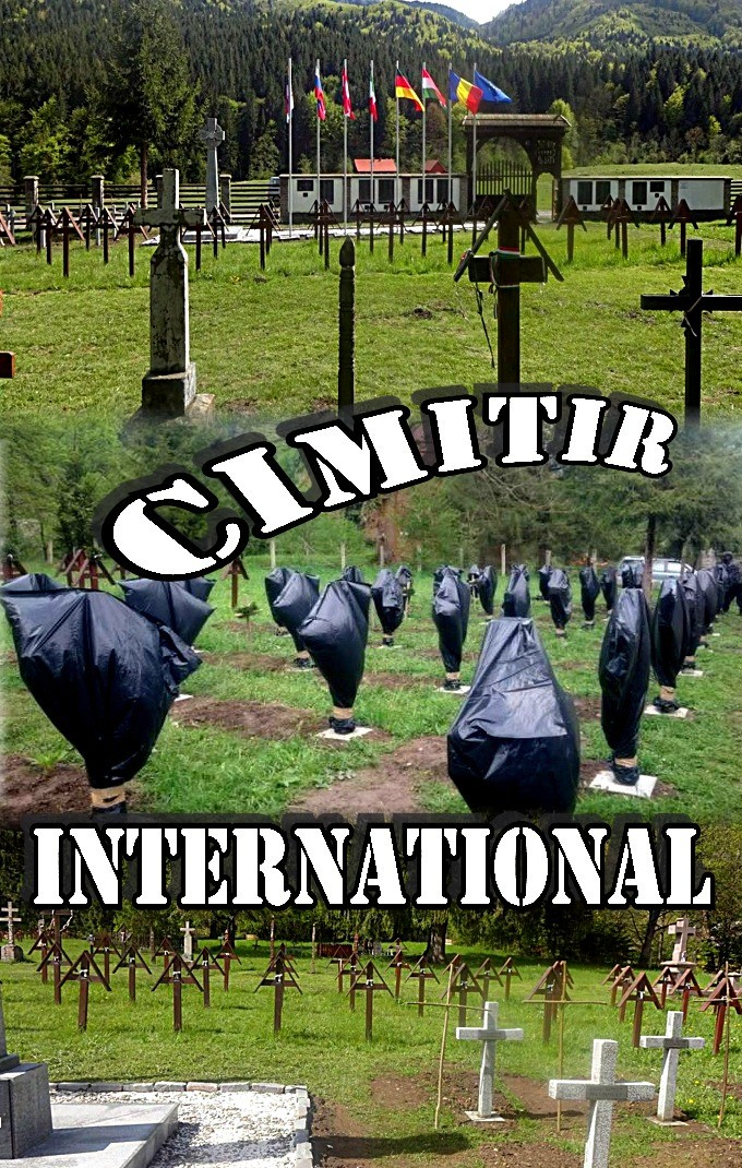 Cimitir international 1