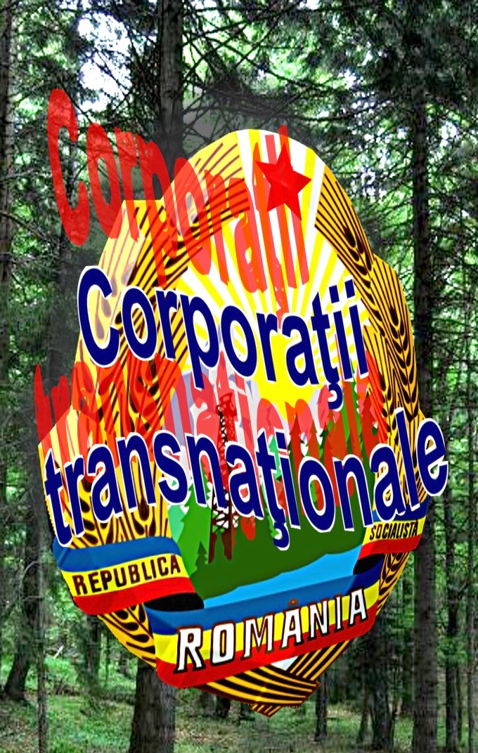 Romania-corporatii transnationale