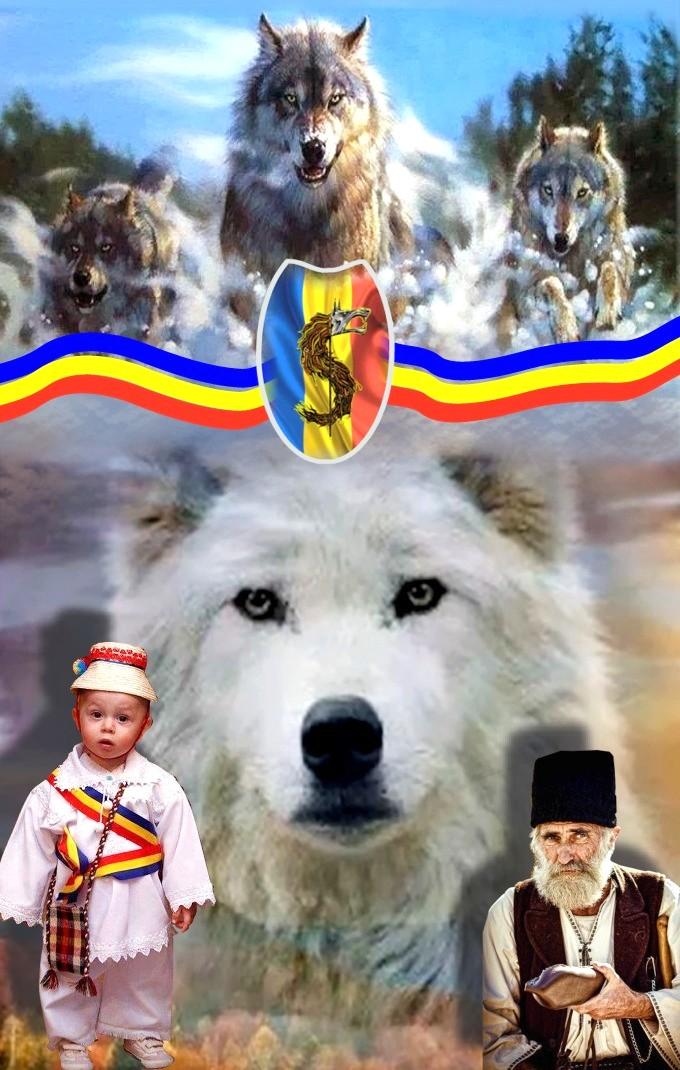 Romania Dacica